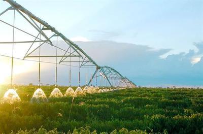 农业政策导向从增产转向提质