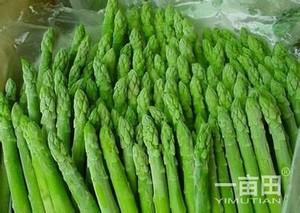 徐州丰县反季节芦笋带动农民增收