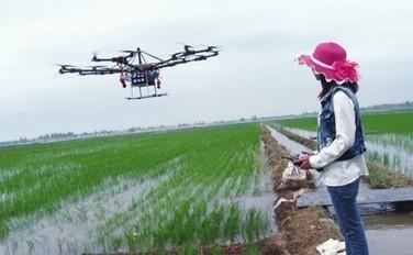 农业农村部:外出务工贫困劳动力90%左右返岗复工
