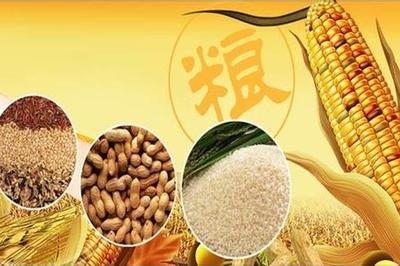 安徽省建粮食收购信用保证基金