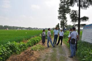 """扬州打造""""竖起来""""的农业科技产业振兴体系"""