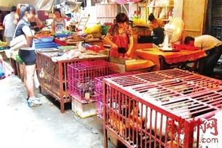 集贸市场鸡肉价格上涨