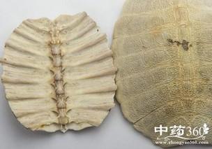 肘后疗劳疟鳖甲酒方的功效与作用
