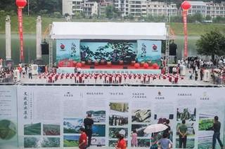 2019中国温州·文成杨梅节开幕