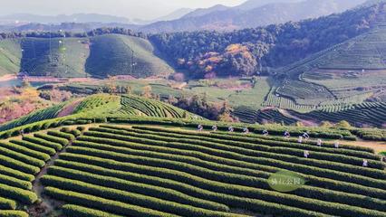 谱写率先实现农业现代化的吉林篇章
