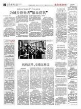 临泉晚秋黄梨上线销售50万斤