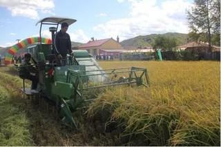黑龙江省多项水稻机械化技术示范效应明显