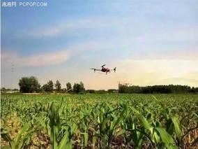 """晋中太谷县科技助力 带动农业""""提档升级"""""""
