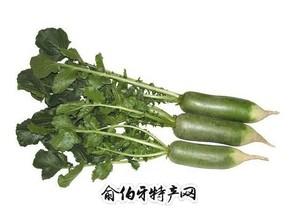 霍河口镇青萝卜