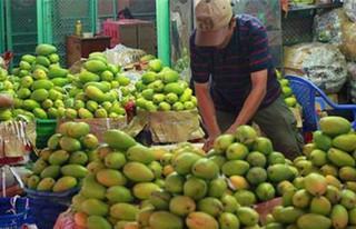 蔬果对华出口下降44%后向澳伸出橄榄枝 转身又为中国设86亿目标