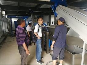 丽江玉龙大力发展油橄榄产业