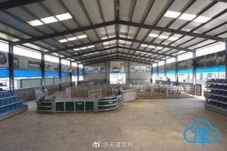 津产种羊助天津策勒农民脱贫