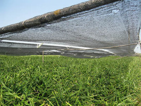 遮阳网与遮光率的关系