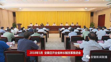 安徽省推深做实林长制改革