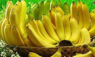 中国打破日本30年纪录 成菲律宾香蕉最大进口国