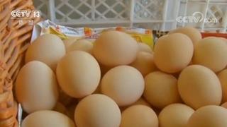 蔬菜、鸡蛋和肉类近期价格走向如何?