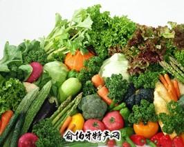 南燕竹蔬菜