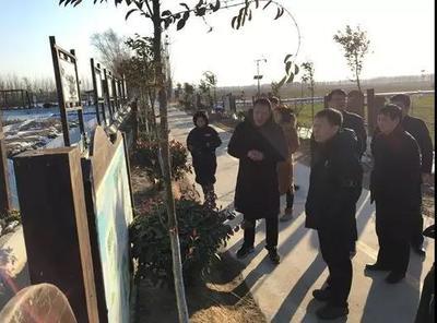 刘保仓带队调研新乡市生态农业