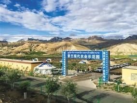 """西藏:走进世界屋脊的""""菜篮子"""""""