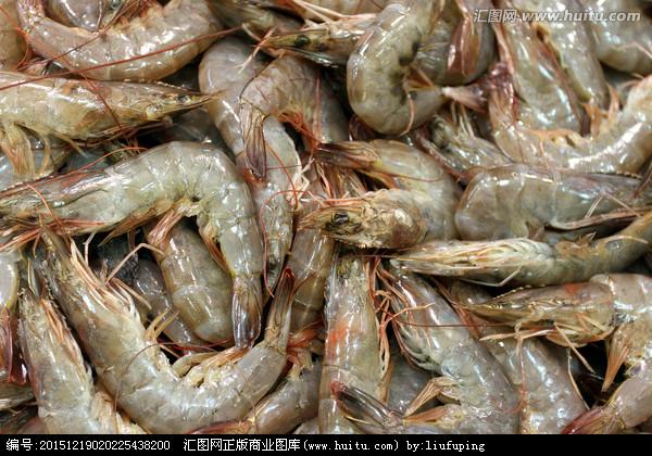 青虾的捕捞