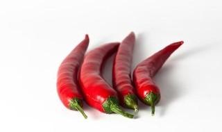 辣椒茎的功效与作用