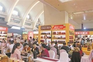 广西梧州:提质升级助六堡茶健康发展