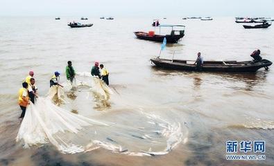 我国*淡水湖鄱阳湖春季禁渔期结束
