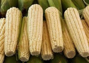 如何常温贮藏嫩玉米嫩花生