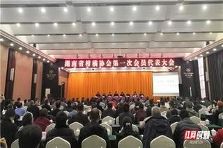 湖南省柑橘协会成立
