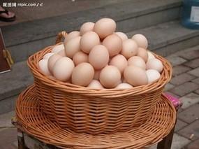 山鸡蛋的功效与作用
