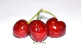 荞麦山村大樱桃
