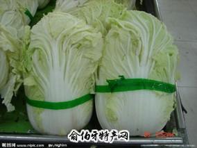 太平村白菜