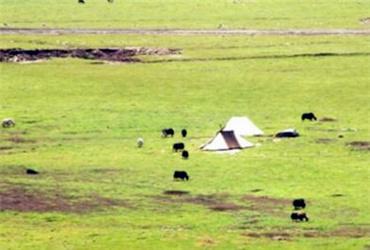 海南州现代生态农牧业建设取得显著成效