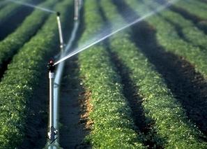 我国发展节水灌溉若干问题的探讨