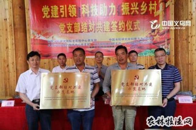 科技助推金华义乌水稻产业高效发展