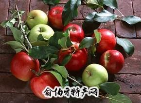 深州红富士苹果