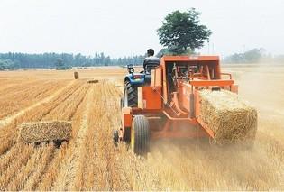 武汉蔡甸区开启农作物秸秆综合利用新模式