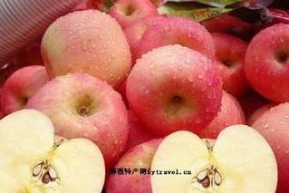 屹唠村苹果