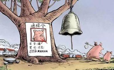 河南省将全面普查畜牧业污染源