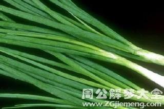 鲜嫩葱叶的功效与作用