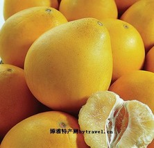 新村琯溪蜜柚