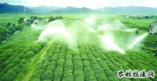 节水灌溉主要有那些技术