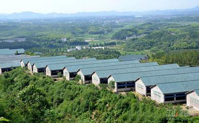 浙江畜牧业打造绿色发展新格局