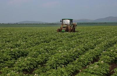 2020年河北省新建高标准农田286万亩