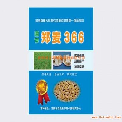 我国*发布超强筋小麦品种