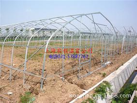 装配式单体钢管温室棚的建造