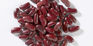 纯种红芸豆