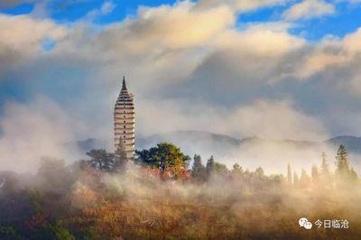 凤庆县探索核桃产业发展新模式