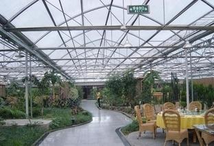 pc阳光板让温室花卉开的更好