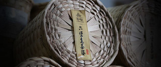 """广西苍梧县:做好""""六堡茶""""文章"""
